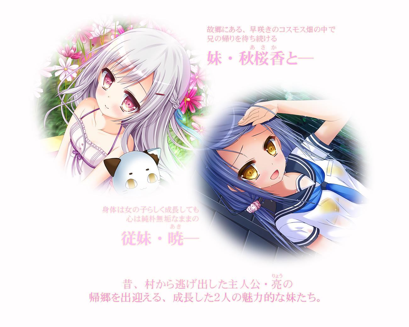 いもけが | あらすじ 妹・秋桜香と、従妹・暁